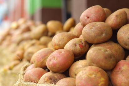 kartoffel-rezept-foodblog-pueree