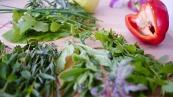 koriander-glasnudelsalat-vegan-rezept