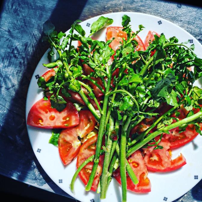 Teil 1: Vegan leben – wie funktioniert das?