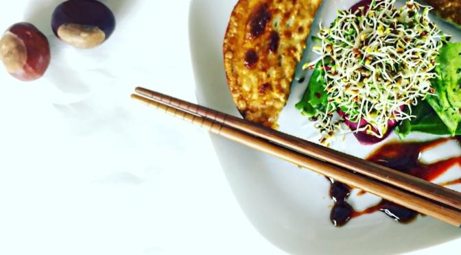 Ausprobiert: Vegane Dumplings!