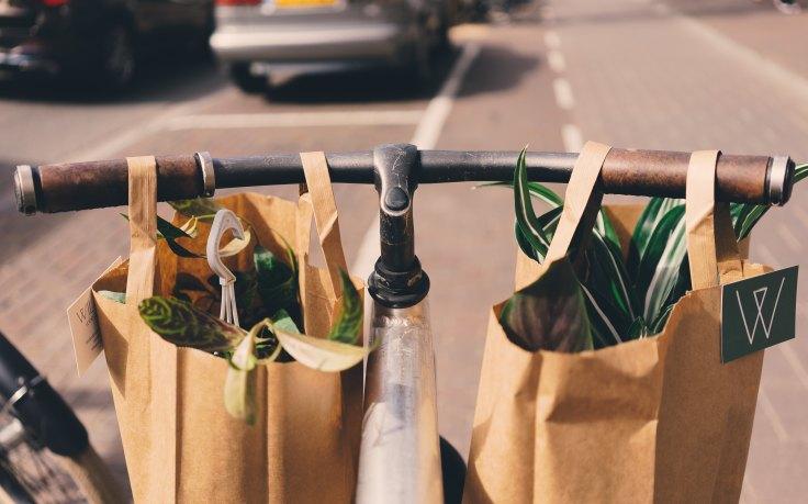vegan einkaufen einkaufsliste shoppinglist