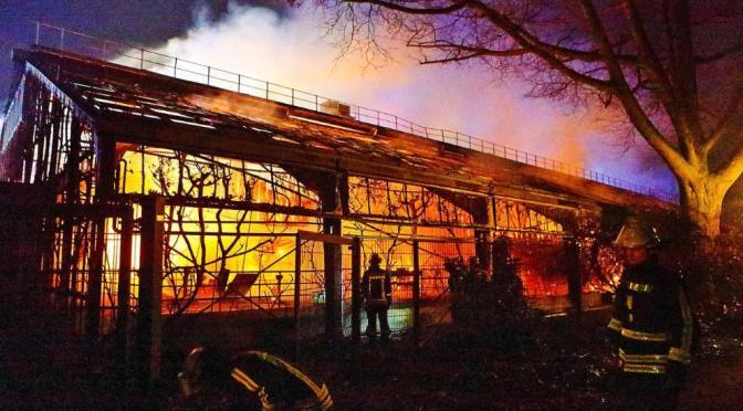 Das Flammeninferno von Krefeld!