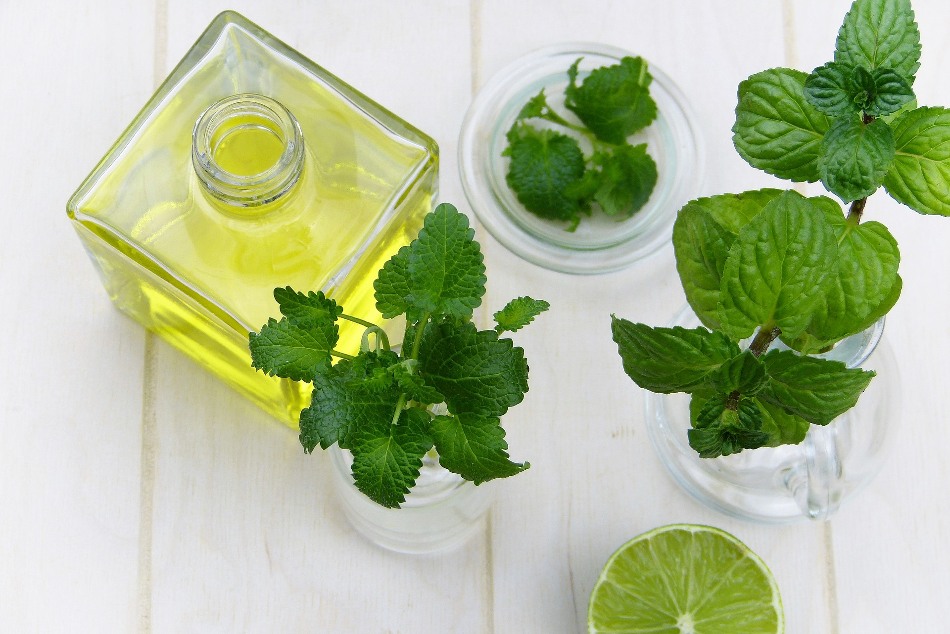 Minze Wassermelone Salat selber machen
